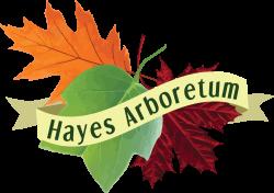 Hayes Arb logo